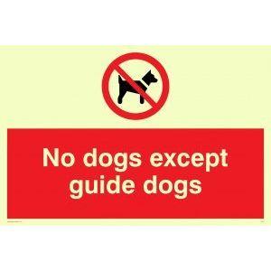 Image for Viking Schilder pv47-a5l-pv''Keine Hunde außer Guide Dogs'' Zeichen